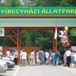 Nyíregyházi Állatpark - Sóstó ZOO
