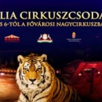 LEJÁRT - Cirkuszi előadás